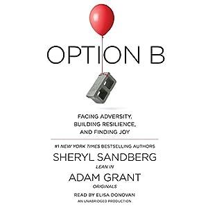 Option B Audiobook