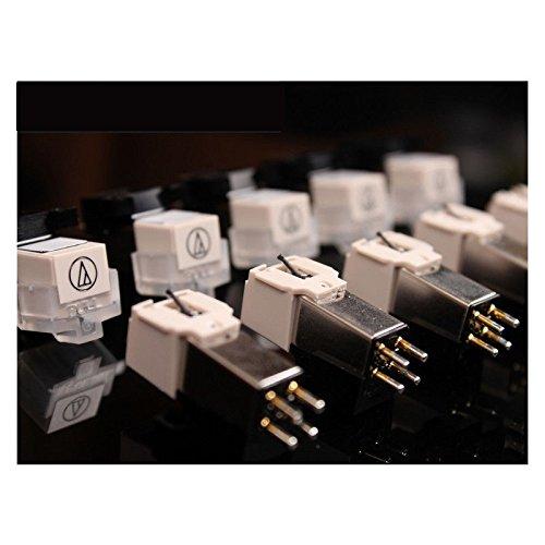 FidgetFidget Gramophone Accessories Stylus Needle For Phonograph Turntable Gramophone Record by FidgetFidget (Image #5)