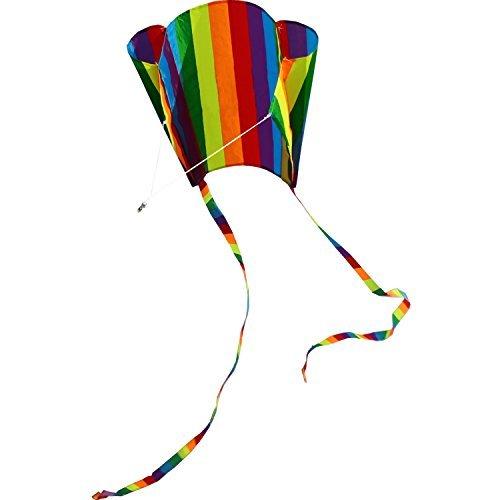 Pocket Kite (Hengda Kite For Kids 31-Inch Rainbow Parafoil Kite)