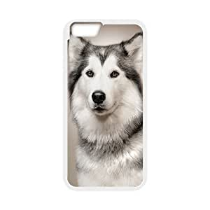 Dogs Unique Design Cover Case for Ipad2,3,4,custom case cover ygtg-307455 by mcsharks