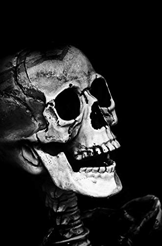 Home Comforts Canvas Print Mask Holidays Halloween Scary People Dummy Skull Vivid Imagery Stretched Canvas 32 x 24 -