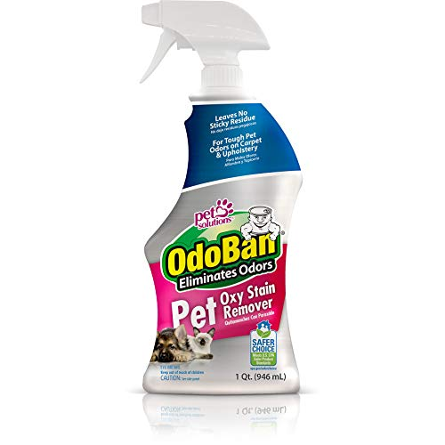 OdoBan Pet Oxy Stain Remover, 32 Fl. Oz. Spray – Deep Cleaning for Tough Odors