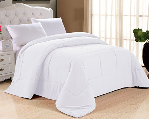 Cathay Home Double Fill Down Alternative Comforter 90GSM ...