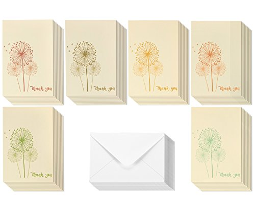 Thank You Note Cards - Feminine Dandelion Design - Bulk Box Set - Beige / Multicolor - Includes 48 Cards with Envelopes - 4 x 6 Inches