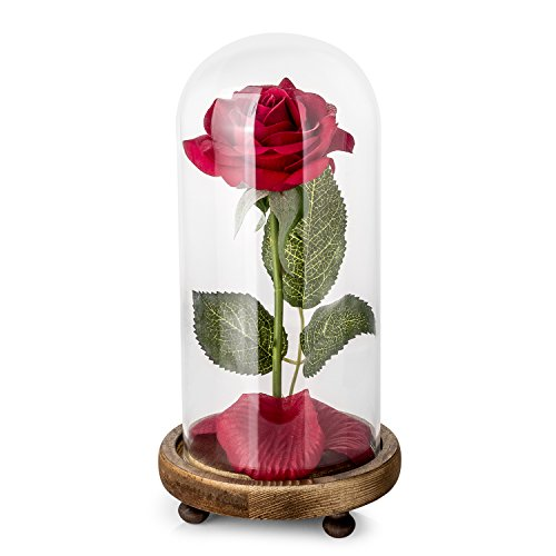 Beauty and the Beast Silk Rose Kit with LED Light