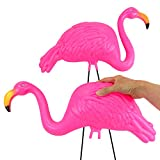 """GIFTEXPRESS Pack of 2, 34"""" Large Bright Pink"""