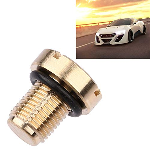 2001 Prom Dress Gown - Coolant Expansion Tank Bleeder Screw Brass Most Models for BMW E36 E39 E46 etc. Auto