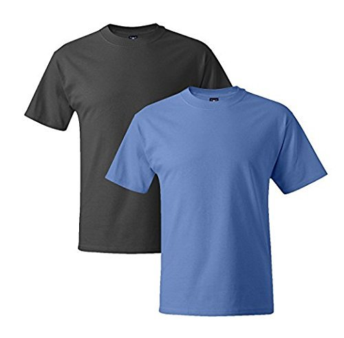 Hanes Mens 5180 Short Sleeve Beefy T, 1 Carolina Blue/1 Smoke Grey 2XL