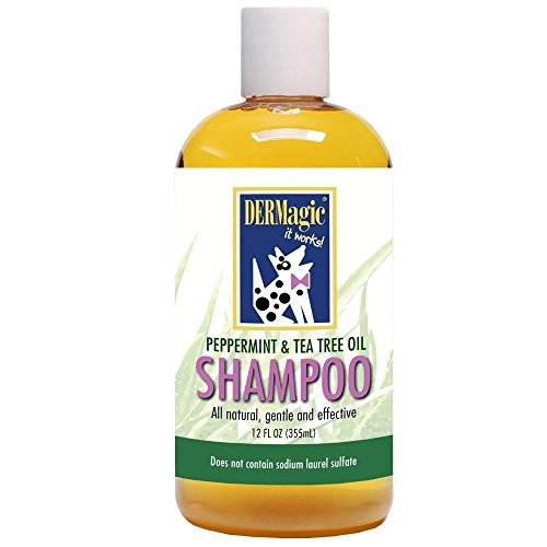 DERMagic Peppermint & Tea Tree Oil Shampoo 12 fl. oz.