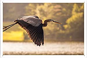 Heron Flying Sky Aves 44655 Cartel de chapa La placa de metal signo poster 20*30cm by Willjo Sign