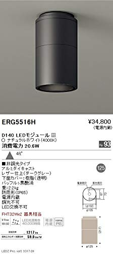 ENDO LED軒下用シーリングダウンライト 防雨形 ナチュラルホワイト4000K ダークグレー 広角 非調光 FHT32W×2相当 ERG5516H(ランプ付) B07HQCWTNG