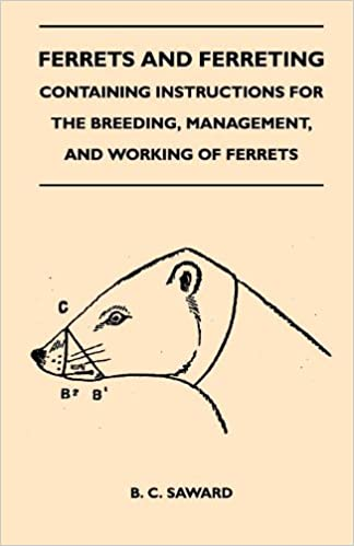Book Ferrets And Ferreting - Containing Instructions For The Breeding, Management, And Working Of Ferrets