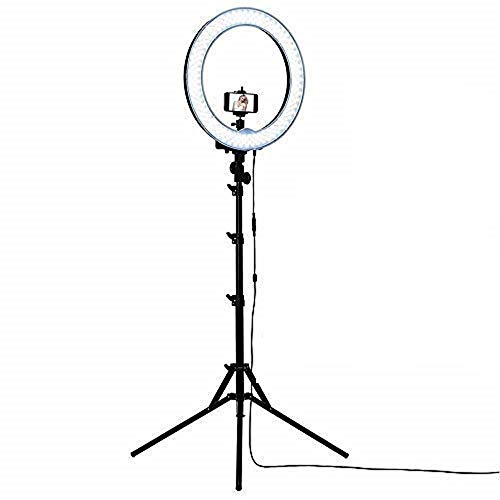 Ring Light with stand | 10 inch Professional Big LED Ring Light with 7 Feet Tripod Stand, 3 Color Modes Dimmable Lighting for YouTube, Photo-Shoot, Video Shoot, Live Stream, Makeup & Vlogging