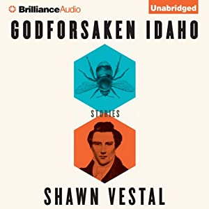 Godforsaken Idaho Audiobook