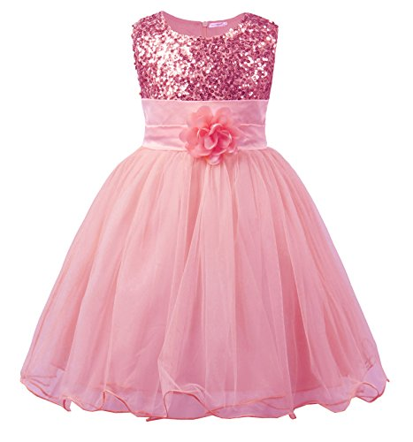 JerrisApparel Little Girls' Sequin Mesh Flower Ball Gown Party Dress Tulle Prom (3T, Pink)