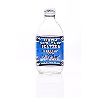 ONYS Original New York Seltzer, Blueberry, 10 ounce (Pack of 12)