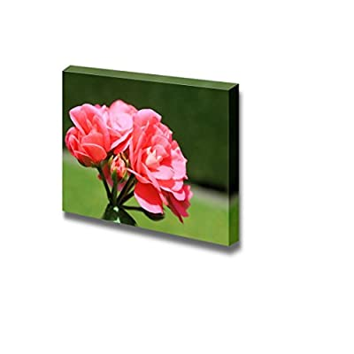 Canvas Prints Wall Art - Closeup of Beautiful Geranium Flower | Modern Wall Decor/Home Art Stretched Gallery Wraps Giclee Print & Wood Framed. Ready to Hang - 24