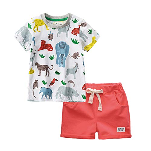 2pcs Little Boys Little Girl's Short Sleeve Tshirt Sets Summer Cotton Graphic Tee (Zoo,2T) ()