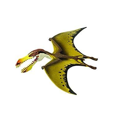 Safari Ltd  Wild Safari Pterosaur: Toys & Games