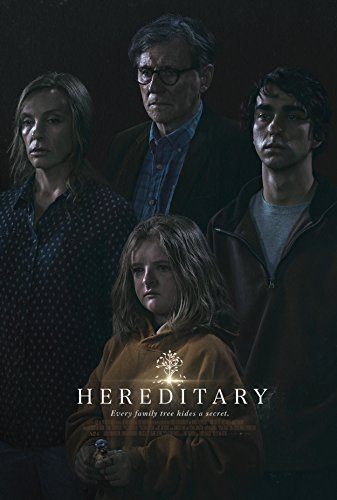 Hereditary  Movie Poster 24x36 inches Style B
