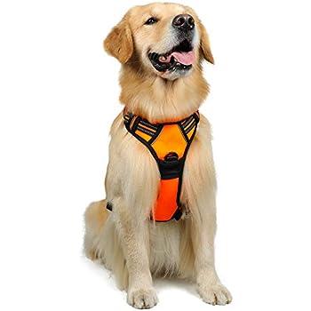 41gj2fHRTSL._SL500_AC_SS350_ amazon com hip doggie ultra comfort olive green mesh harness vest