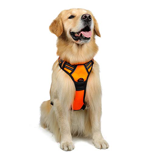 Rabbitgoo  Dog Harness No-Pull Pet Harness Adjustable Outdoor Pet Vest 3M Reflective Oxford Material Vest for Dogs Easy Control for Small Medium Large Dogs (Orange, -