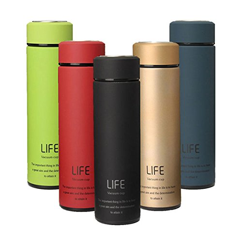 RISHIL WORLD 500ml Fashional Stainless Steel Travel Mug Thermos Vacuum Flask Cup Bottle Gift Single Item. from RISHIL WORLD