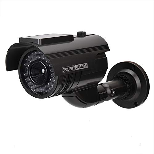 Bestselling Simulated Cameras