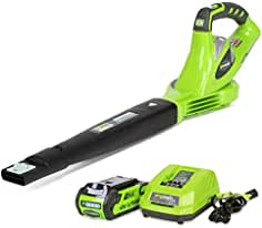 Greenworks 40V 150 MPH Variable Speed Cordless Blower, 2.0 AH Battery Included...