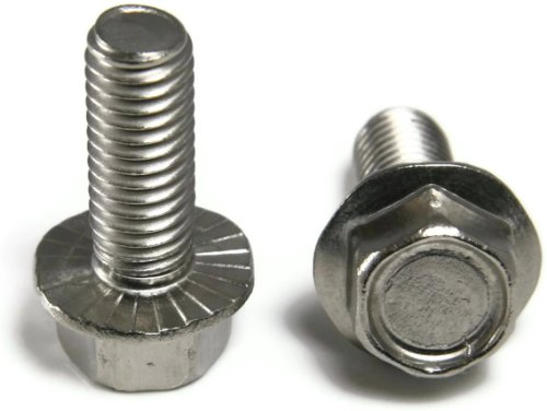 M6 x 1.0 x 25M Hex Flange Bolt FT A2 Stainless Steel - Qty-100 by RAW PRODUCTS CORP