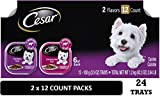 Cesar Canine Cuisine Variety Pack for Small Dogs, Porterhouse Steak & Filet Mignon, 12 Count (Pack of 2)