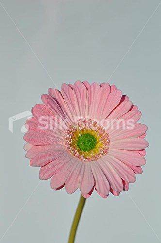 Artificial rosa Pastel de margarita flores sueltas solo vástago ...