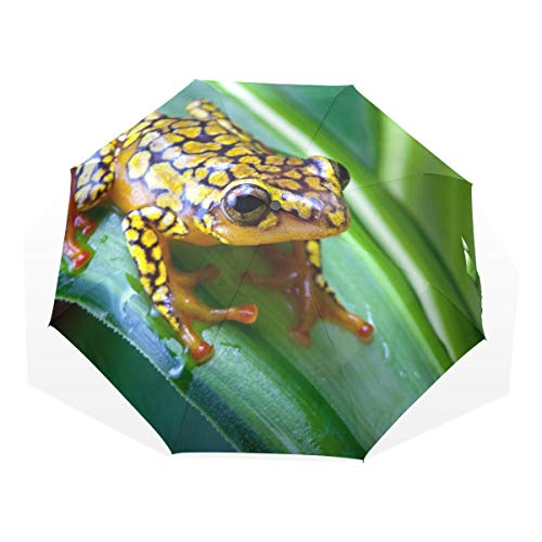 (XiangHeFu Umbrella Harlequin Poison Dart Frog Auto Open Close 3 Folds Lightweight Anti-UV )