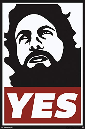 Trends International WWE-Daniel Bryan Wall Poster, 22.375