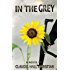 In the Grey (Alex the Fey thriller series Book 5)