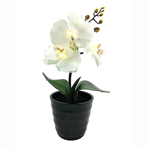 BABALI Lighted Artificial Orchids Potted Plants Battery Powered 11 Inches Tall Warm White LED 3PCS White Silk Moth Orchid Fake Flowers for Home Office Hotel Indoor Decoration