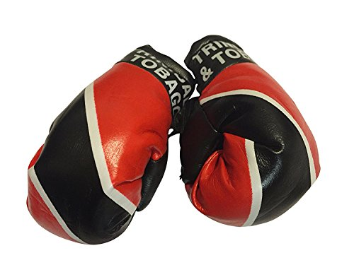 Flag Mini Small Boxing Gloves to Hang Over Car Automobile Mirror – Americas(1-Pack, Country: Trinidad & Tobago (Trinidad Boxing Gloves)