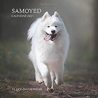 Samoyed Calendar 2021: 16 Month Calendar