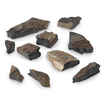 43d41c2a65f04 American Educational Calcareous Gray Shale Sedimentary Rock, 1Kg: Science  Classroom Specimens: Amazon.com: Industrial & Scientific