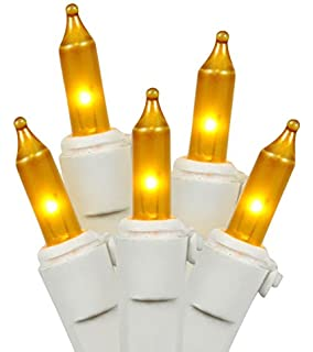 Amazon.com: Everglow 2980-22 100 Clear White Wire Light Set: Home ...