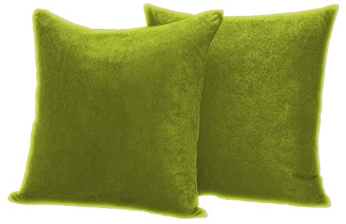 2-Pack Luxury Ultra-Soft Suede Decorative Pillow cover 18