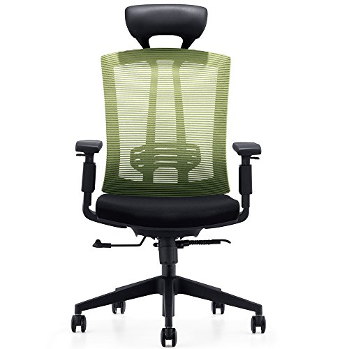 k Ergonomic Office Chair with Tilt Lock, Tall Desk Chair with PU Headrest and Adjustable Armrest, Lime Green Mesh ()