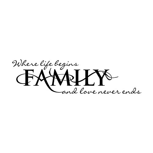 (VINYL DECAL HOME WALL SIGN - FAMILY WHERE LIFE BEGINS AND LOVE NEVER ENDS - 8x 30