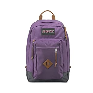 JanSport Reilly Backpack (Purple Frost)