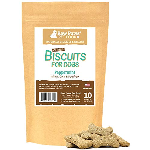 (Raw Paws Natural Mint Dog Treats, 10-oz - Crunchy, Natural Dog Biscuits Made in USA - Peppermint Dog Treats - Minty Dog Breath Freshener - Healthy, Bone Shaped Bakery Dog Treats - Training Treat Bones )