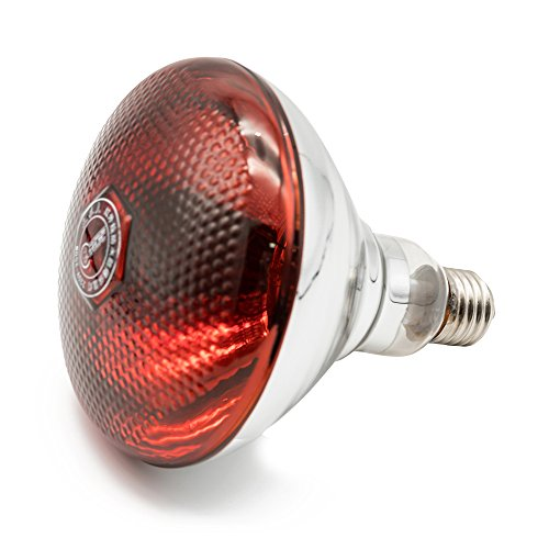 b Red Hard Explosion-Proof Glass Infrared Heating Lamp for Chicken,Pet,Bathroom Yuba Light Bulb(250w,120v) ()