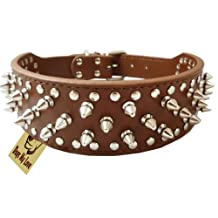 "19""-22"" Brown Leather Spiked Studded Dog Collar 2"" Wide, 37 Spikes 60 Studs, Pitbull, Boxer"