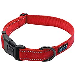 Max and Neo NEO Nylon Buckle Reflective Dog Collar - We Donate a Collar to a Dog Rescue for Every Collar Sold (Medium, RED)
