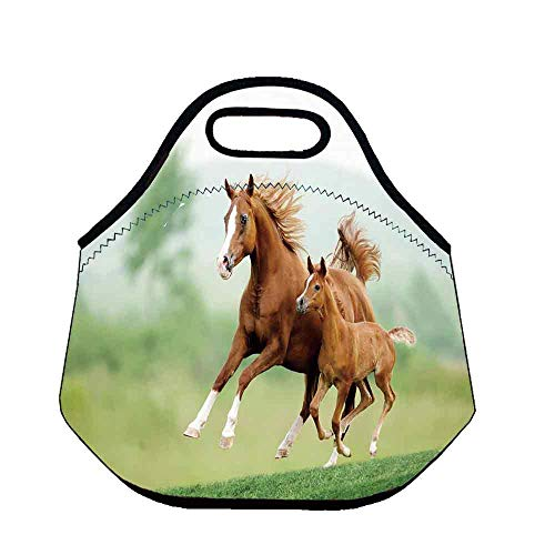 Horse Decor Custom Neoprene Lunch Bag,Running Chestnut Horses Mare and Foal Meadow Scenic Summer Day Outdoors for Lunch Trip Travel Work,Throw(11.8''L x 6.3''W x 11''H) ()