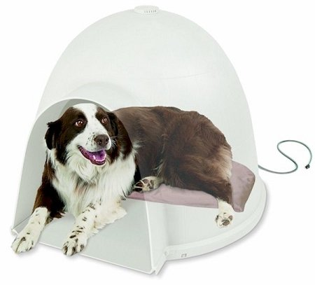 K&h Igloo Manufacturing (Igloo Soft Heated Dog Bed Size/Watt: 17.5
